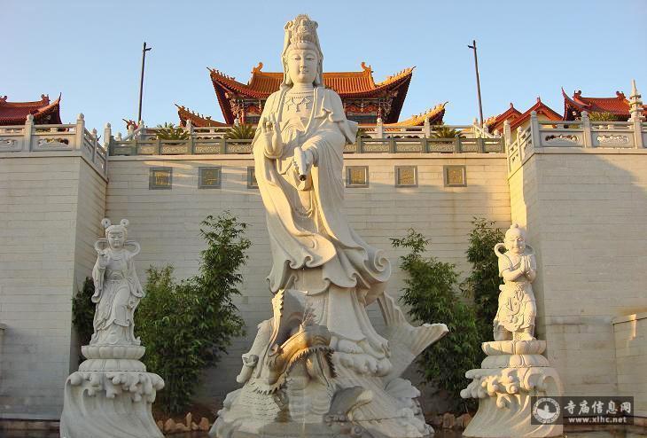 浙江省温州中普陀寺-寺庙信息网